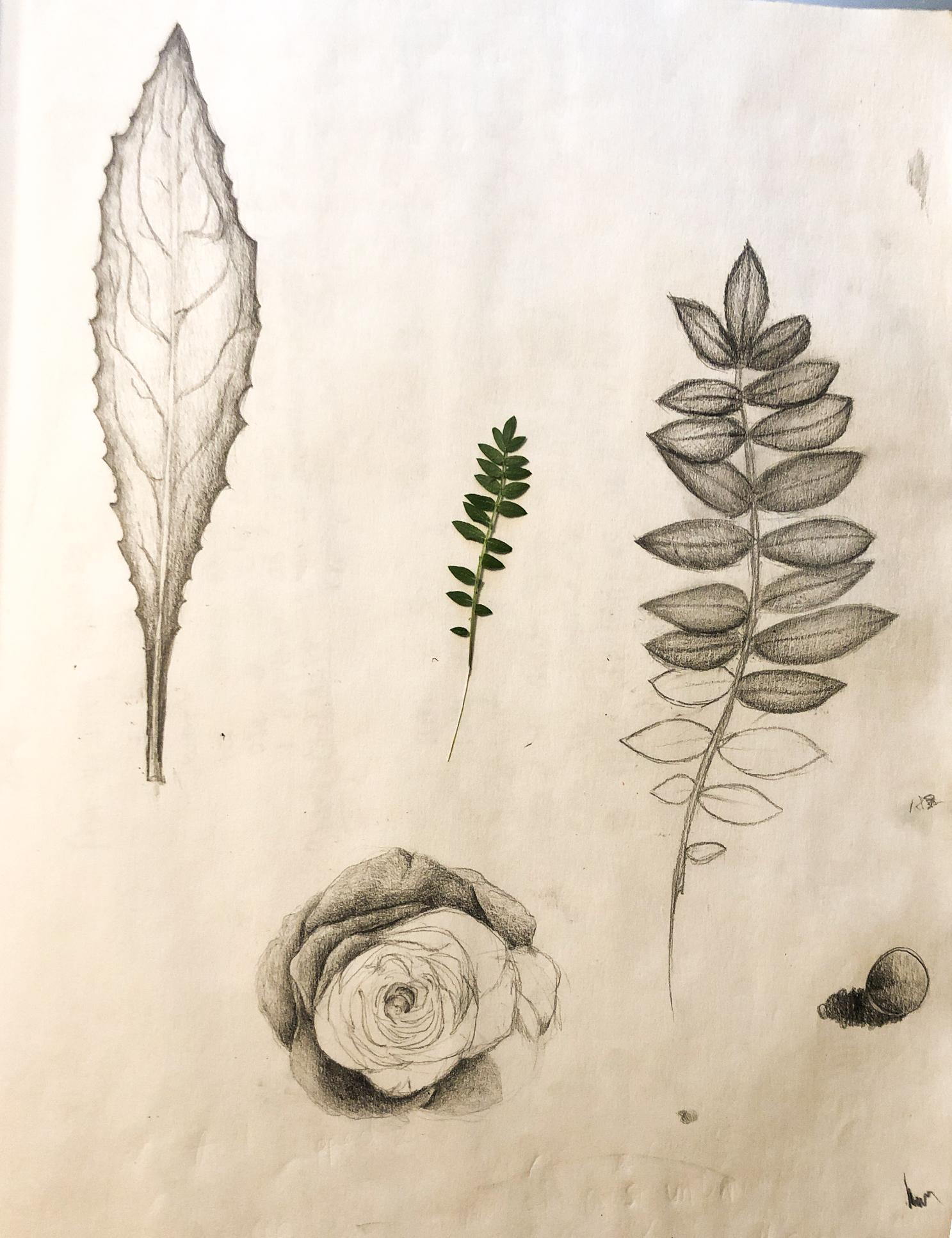 sketchbook-pg13